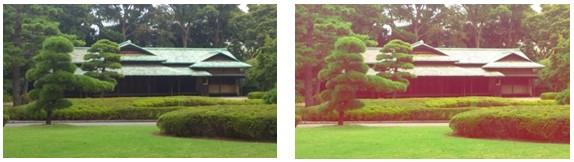 Photo jardin impérial