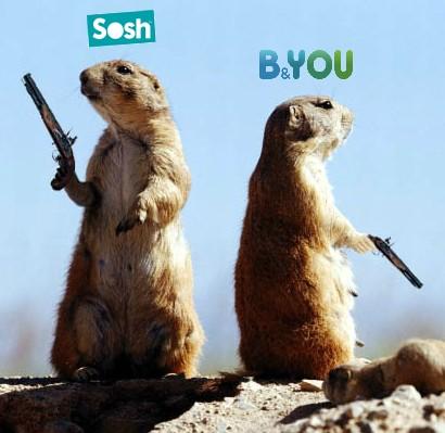 Sosh ou B&You