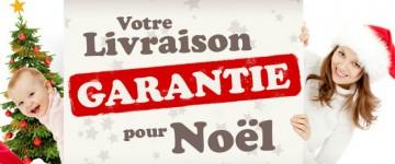 livraison-garantie-pour-noel