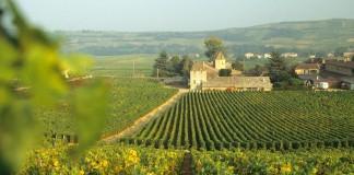 Couverture 4G : quel opérateur choisir en Bourgogne ?