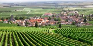 Couverture 4G : quel opérateur choisir en Champagne-Ardenne ?