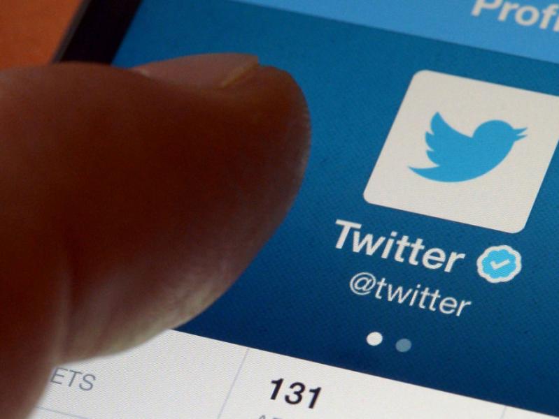 Twitter, animaux, insolite, réseaux sociaux