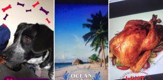 Snapchat filtres reconnaissent objets animaux et nourriture