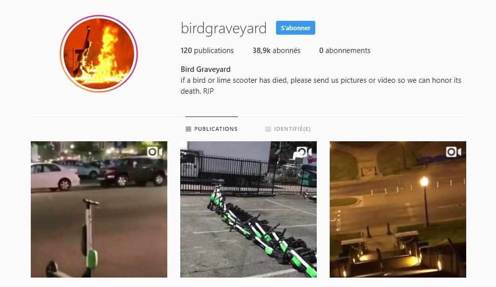 Bird Graveyard, le cimetière virtuel de trottinettes sur Instagram