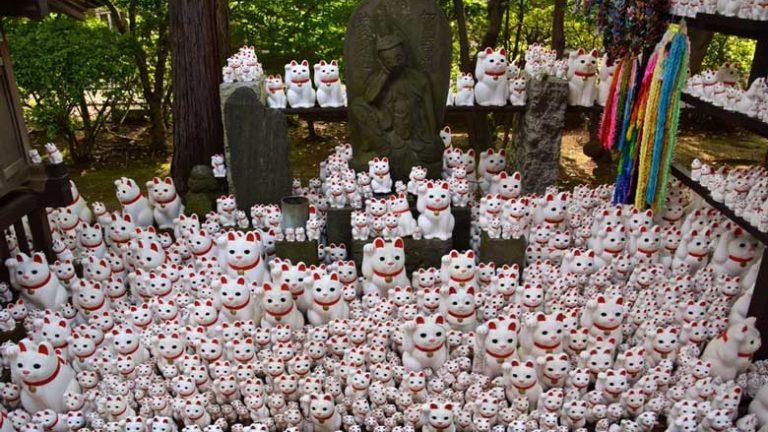 Le succès du temple de Gotokuji sur Instagram