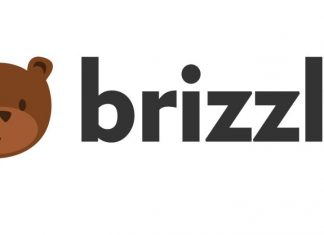 Brizzly