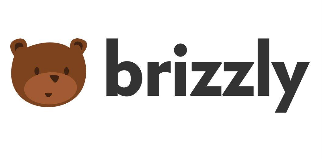Brizzly : le réseau social parfait pour se défouler en toute discrétion !