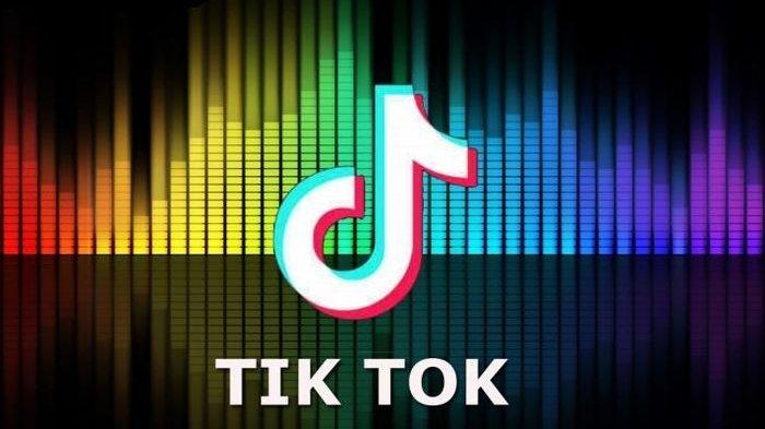 TikTok réussit à avoir 30 millions d'utilisateurs en 3 mois