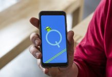 Android Q Xiaomi