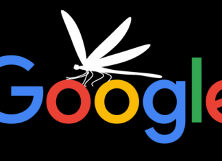 Dragonfly Google