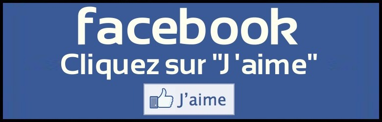 """facebook j aime - Facebook essaye une nouvelle version de son réseau social sans """"J'aime"""""""