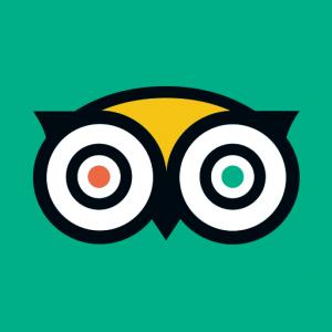 tripadvisor 300x300 - Les meilleures applications a posséder sur son smartphone en 2020